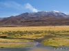 20-20140412-06-bofedales-024