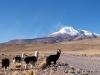 34-diashow-chile-042
