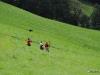 fita-world-archery-3d-championships-2011-donnersbach-02-09-2011-04-33-48
