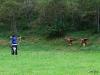 fita-world-archery-3d-championships-2011-donnersbach-02-09-2011-10-34-31
