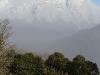 vulkan-quetrupillan-25-06-2011-13-59-06