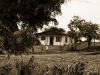 costa-rica-casas-25-05-2013-09-49-50-28-05-2013-08-25-36-2013-08-25-36