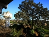 from-the-window-of-my-room-hotel-pandav-pachmarhi-6
