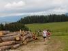 ktn-berlaufmeisterschaf-panoramalauf-4