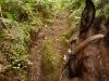 chachapoyas-congon-caballos2