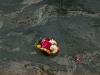 haridwar-flowersatganges