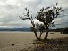 chile-lago-puyehue-bims-bedeckt-19-06-2011-13-31-23