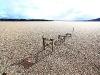 chile-lago-puyehue-bims-bedeckt-19-06-2011-13-57-01