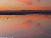 20140419-04-laguna-chaxa-228