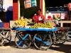 pushkar-streets-ghats-53