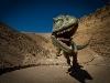 querulpa-huellas-dinosaurier-07-11-2010-20-23-43-07-11-2010-20-34-39-2010-20-34-39