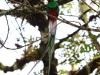 2013-05-24-01-quetzal-tour-89