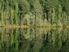 2011_06_20-02-lago-espejo-4