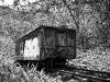 salkantay-trek-to-machu-picchu-tren