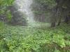 ausflugsziel-schneeberg-hidden-landscapes-1