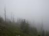 ausflugsziel-schneeberg-hidden-landscapes-12