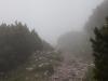 ausflugsziel-schneeberg-hidden-landscapes-7