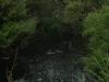 2010_06_08-01-tokaanu-46