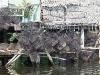 cambodia-tonle-sap-lake-63