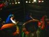 loja-fiesta-virgen-de-cisna-06-09-2010-22-38-29
