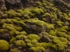 20120824-01-westmanner-insel-42