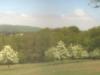 pinhole-world-day-lainzer-tiergarten