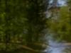 world-pinhole-day2013-ritchy-pop-lainzer-tiergarten-9817