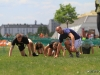050-x-cross-run-wien-donauinsel-2012-26-05-2012-11-37-12-26-05-2012-11-37-12-2012-11-37-12-26-05-2012-12-06-26-2012-12-06-26