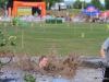 077-x-cross-run-wien-donauinsel-2012-26-05-2012-11-37-12-26-05-2012-11-37-12-2012-11-37-12-26-05-2012-12-22-31-2012-12-22-032