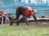 086-x-cross-run-wien-donauinsel-2012-26-05-2012-11-37-12-26-05-2012-11-37-12-2012-11-37-12-26-05-2012-12-41-53-2012-12-41-53